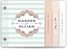 This is a green wedding invitation minibook card by Frooted Design called Striped Sweet Nothings with standard printing on strathmore in minibook.