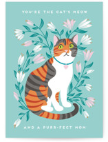 This is a green mothers day card by Jamie Alexander called Purr-fect Mom with standard printing on signature in greeting cards.