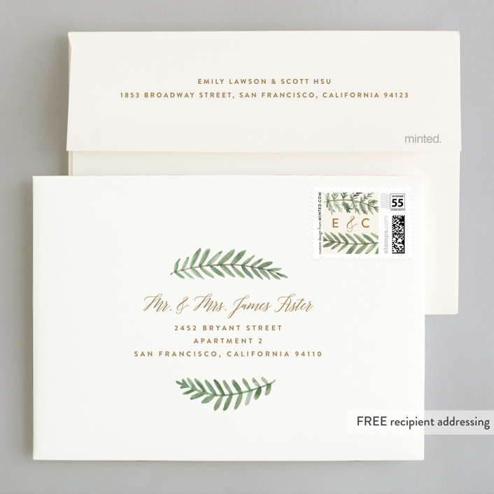 painted ferns wedding invitations by amy kross minted