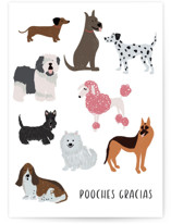 This is a white greeting card by Laura Bercovich called Pooches Gracias with standard printing on signature in greeting cards.