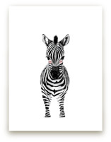 baby animal.zebra