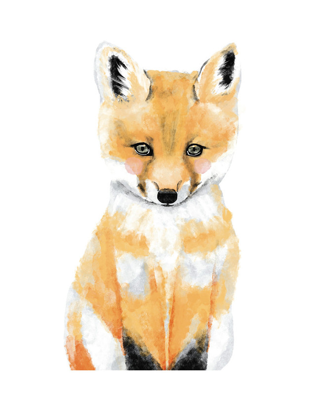Baby Animal.Fox Wall Art Prints by Cass Loh | Minted