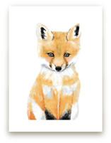Baby Animal.Fox