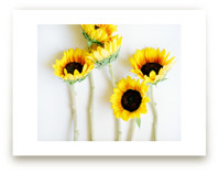 Summer Sun by Kristin Muntean