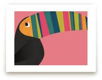 Stripy Toucan