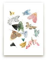 Moths by Emilie Simpson