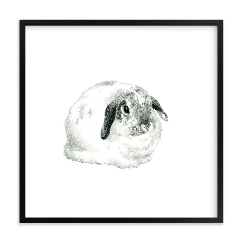 """""""Lop Eared Bunny Rabbit"""" - Limited Edition Art Print by Corinne Aelbers in beautiful frame options and a variety of sizes."""