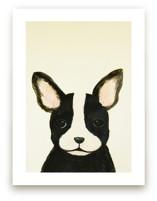 French bulldog puppy by Chloe Chung