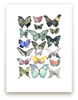 Watercolor Butterfly Co... by Heidi Miller Lowell