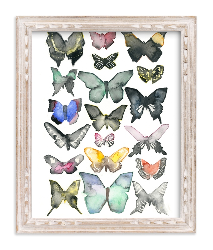Tiny Home Designs: Watercolor Butterfly Collection Wall Art Prints By Heidi