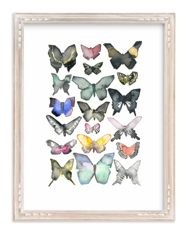 """Watercolor Butterfly Collection"" - Limited Edition Art Print by Heidi Miller Lowell in beautiful frame options and a variety of sizes."