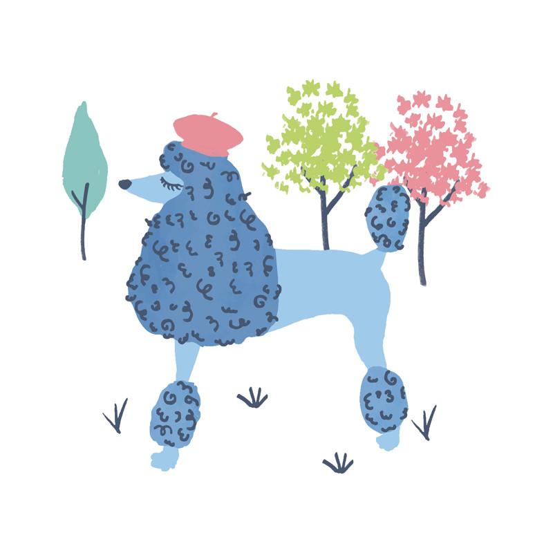 Parisian Poodle Wall Art Prints by Ali Macdonald   Minted