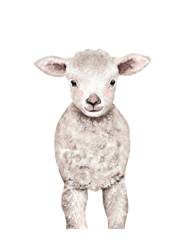 Baby Animal Sheep Wall Art Prints by Cass Loh | Minted