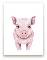 Baby Animal Pig