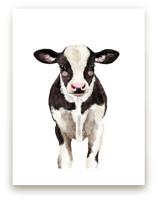 Baby Animal Ox