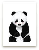 Baby Panda by Cass Loh