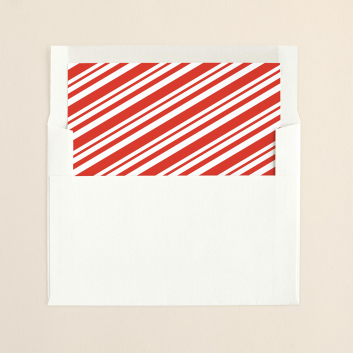"""""""Photo Booth"""" - Modern Slip-in Envelope Liners in Berry by Leah Bisch."""