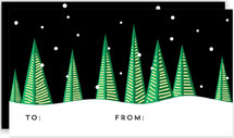 Holiday Trees at Night by Christina Novak