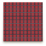 Playful Plaid by Anamaria BC