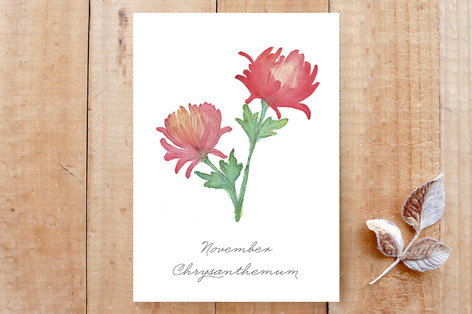 November Chrysanthemums Cards