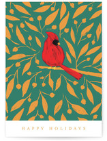 Xmas Cardinal NC by Belia Simm