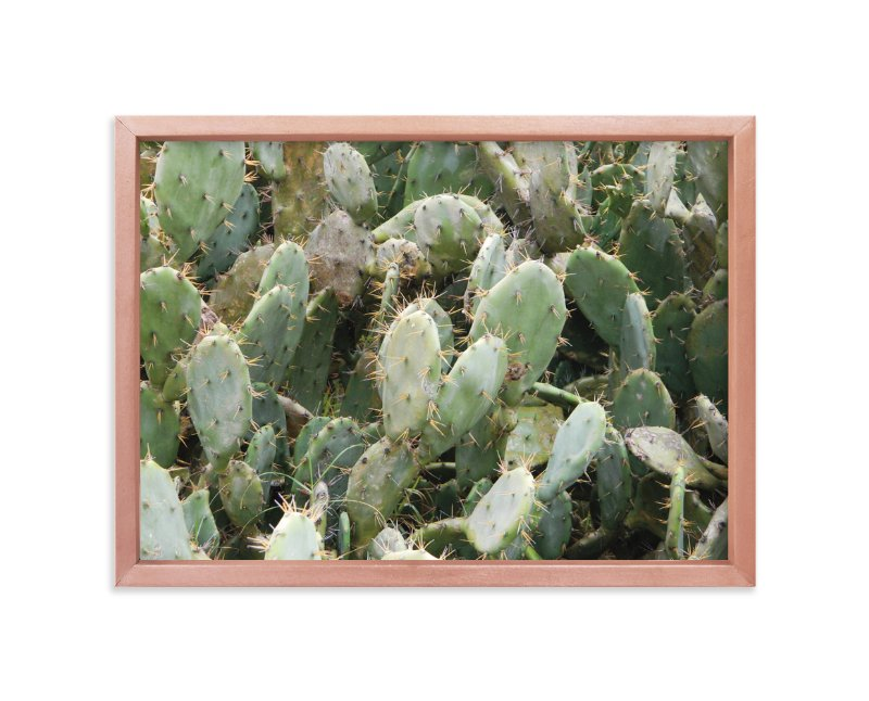 """""""A Cancun Cactus"""" - Art Print by Kelsey McNatt in beautiful frame options and a variety of sizes."""