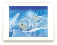 Keep Warm Naatick by Tracy Ann