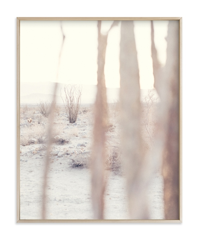"""Ocotillo IV"" - Art Print by Kamala Nahas in beautiful frame options and a variety of sizes."
