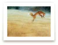 Summer Gold-Red Fox by Tracy Ann