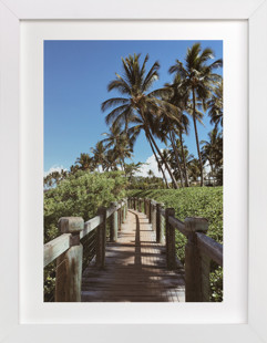 Palm Tree Pathway  Art Print