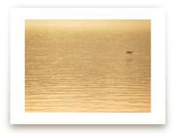 Lake Tahoe series no. 4 by Neeta Sawhney
