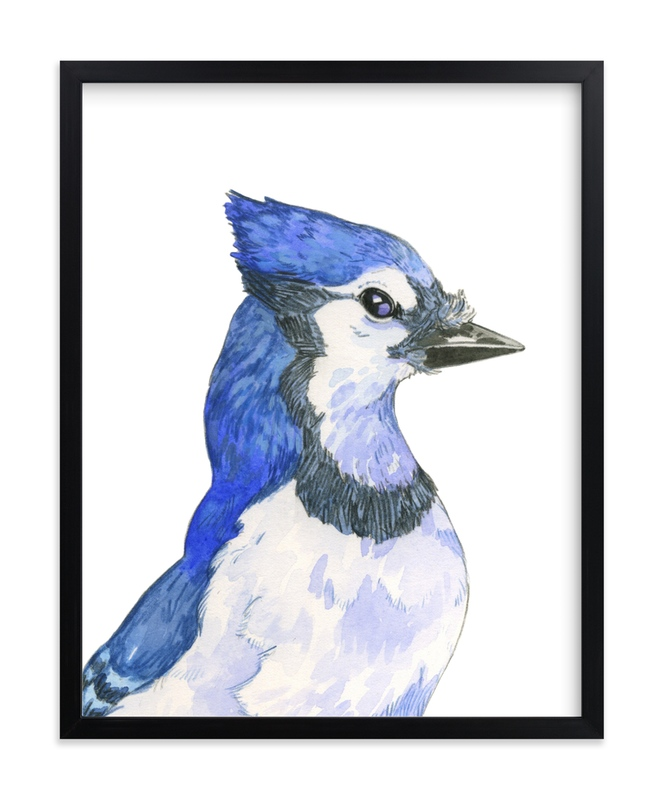 """Blue Jay"" - Art Print by Natalie Groves in beautiful frame options and a variety of sizes."