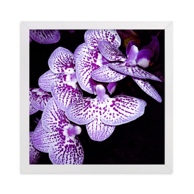 """""""Elegant Orchid"""" - Art Print by Me Amelia in beautiful frame options and a variety of sizes."""