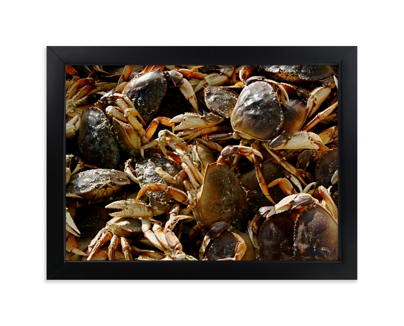 """""""Crab Catcher"""" - Art Print by AJD in beautiful frame options and a variety of sizes."""
