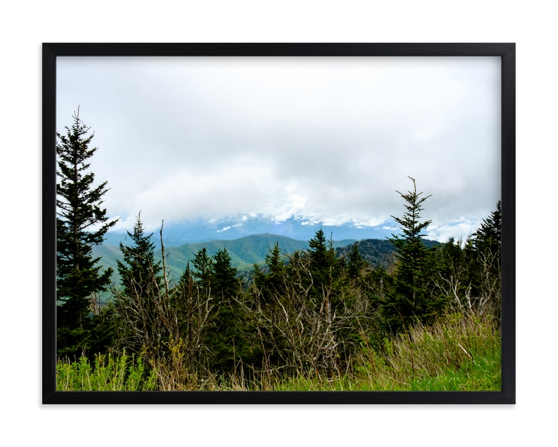 """""""The Forrest"""" - Art Print by Hannah Graham in beautiful frame options and a variety of sizes."""