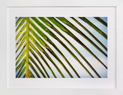 PALM PALM  Art Print