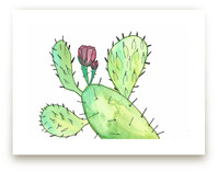Prickly Pear Plant by TweetSweet