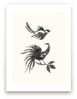 Ink Birds