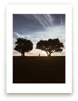 Last Light by Christian Florin