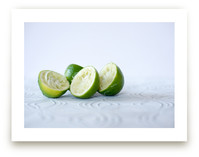 lime by Giulia Doyle