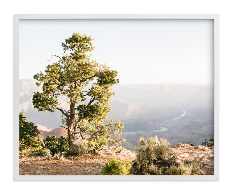 """Canyon Tree"" - Art Print by Anna Western in beautiful frame options and a variety of sizes."