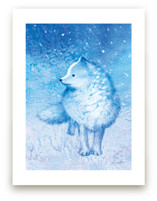 Arctic Fox, Frosty Toes by Tracy Ann