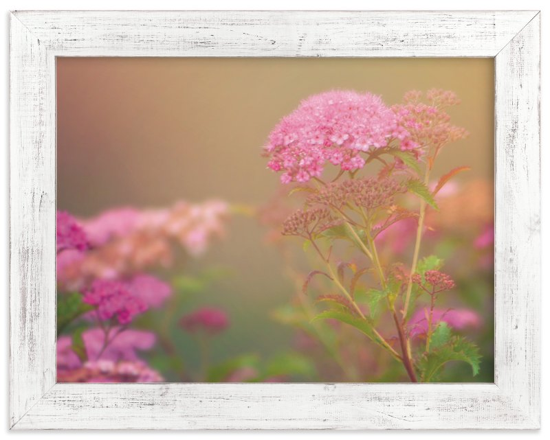 """""""Pink"""" - Art Print by Smile Peace Love in beautiful frame options and a variety of sizes."""