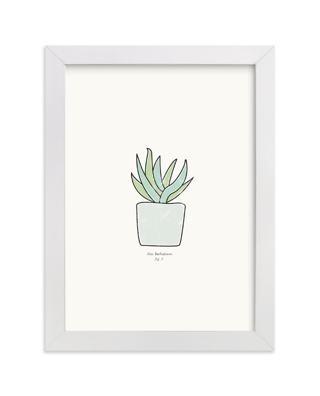 """""""Succulent fig. 3"""" - Art Print by Stacey Meacham in beautiful frame options and a variety of sizes."""