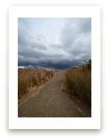 Into the rain by NSMARK