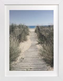 Grassy Beach Art Print