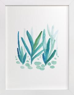 growing grass  Art Print