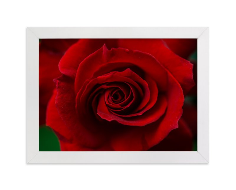 """""""Flower 002"""" - Art Print by Arash Fattahi Acosta in beautiful frame options and a variety of sizes."""