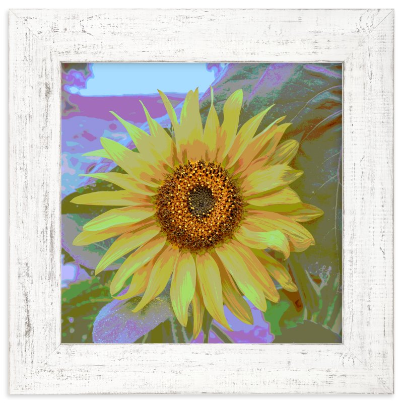 """""""sunFLOWER"""" - Art Print by Gail Schechter in beautiful frame options and a variety of sizes."""