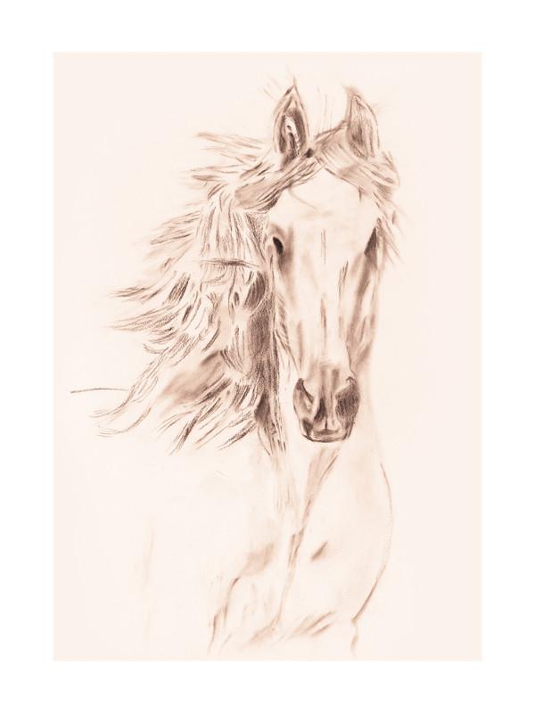 Charcoal Sketch Art Print Horse